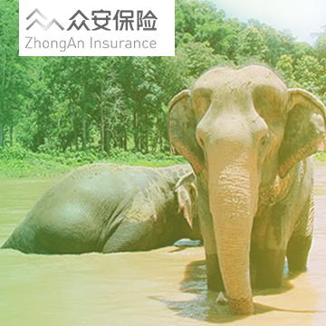 众安趣旅行东南亚旅行保险计划一